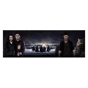 Twilight. Размер: 180 х 60 см